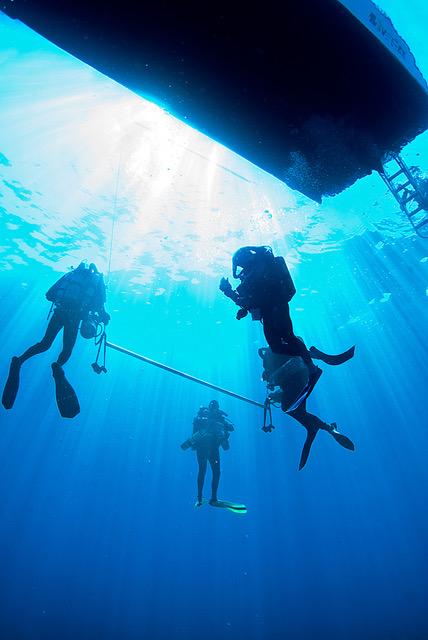 PADI Boat Diver Speciality